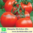 HS-Outerui606 F1 Hybrid Tomato seeds for planting