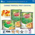 Canned Tropical Fruit Cocktail TFC 2014 NEW STOCK
